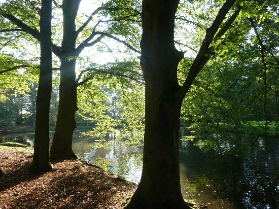 Kasteel de Essenburgh: Het kasteelpark