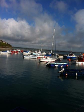 باي فيو هوتل: The harbour 