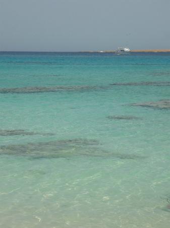 Stella Di Mare Beach Resort & Spa Makadi Bay : La plage!!!