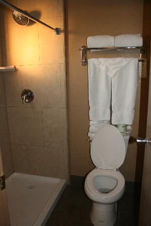 BEST WESTERN Royal Sun Inn & Suites: Bathroom