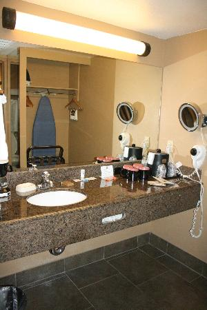 BEST WESTERN Royal Sun Inn & Suites: Sink/Vanity area