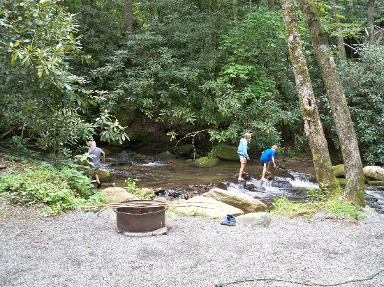 Indian Creek Campground : Creek and fire ring