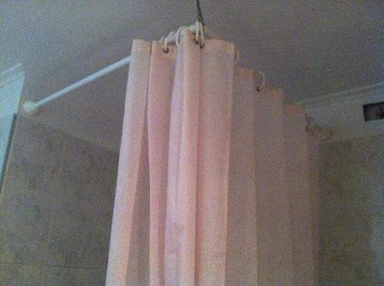 Plaza Hotel: Ghetto shower curtain