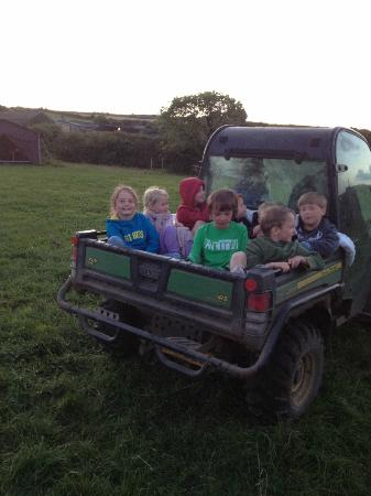 Feather Down Farms at Boswarthen Farm: An evening trip round the farm for the glamping kids