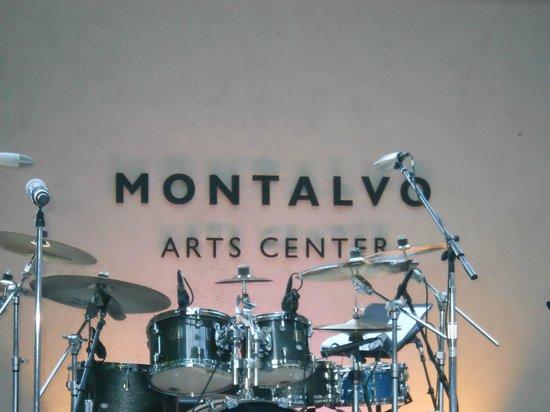 Montalvo Arts Center-The perfect musical venue