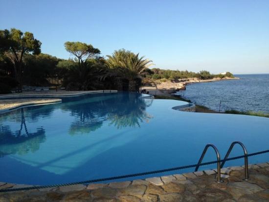 Hotel Costa dei Fiori: Piscina sul mare