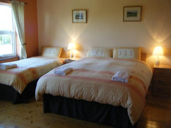 Ashbrook House: Double Single Bed Room