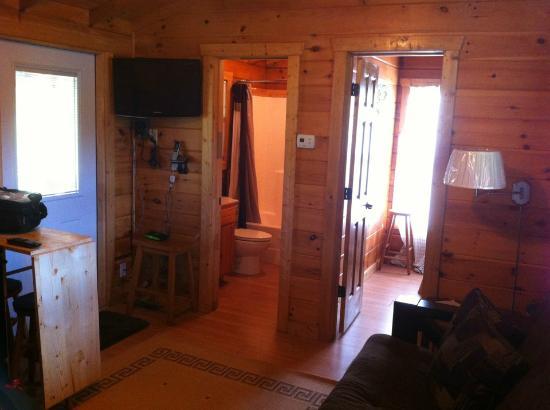 Copperhead Lodge : Living room