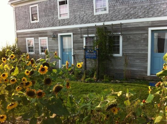 John Sterling Harbor House: sunflowers and a lovely breakfast