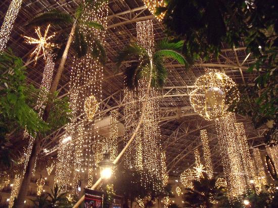 Opryland Christmas Lights 2021 Decorations From Christmas Picture Of Gaylord Opryland Resort Convention Center Nashville Tripadvisor