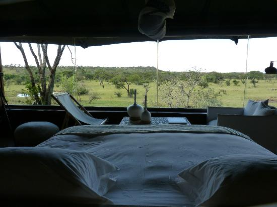 Singita Faru Faru Lodge: Room with a view