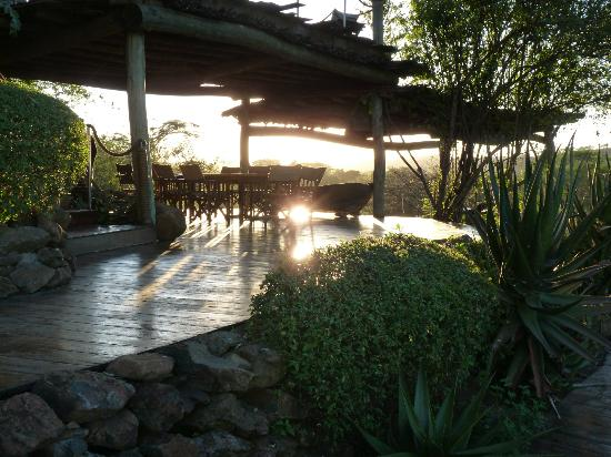 Singita Faru Faru Lodge: Morning sunshine