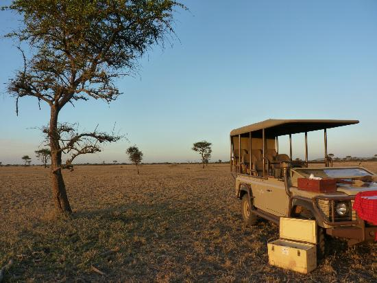 Singita Faru Faru Lodge: Stopping for sundowners on the wide open plains