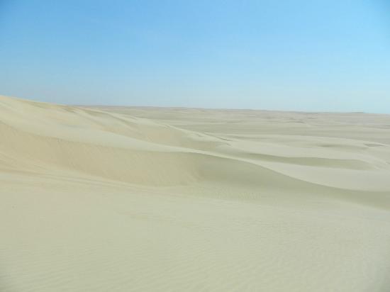 Adrenarena: the desert