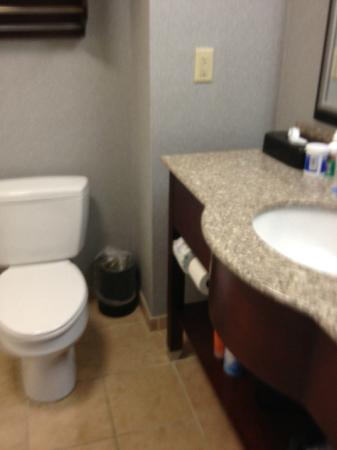 Hampton Inn and Suites Cape Cod - West Yarmouth: bathroom