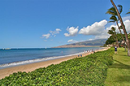 Maalaea Surf Resort : Beachfront View of Ma'alaea Bay