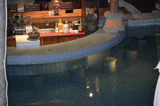 Sativa Sanur Cottages: Pool Bar
