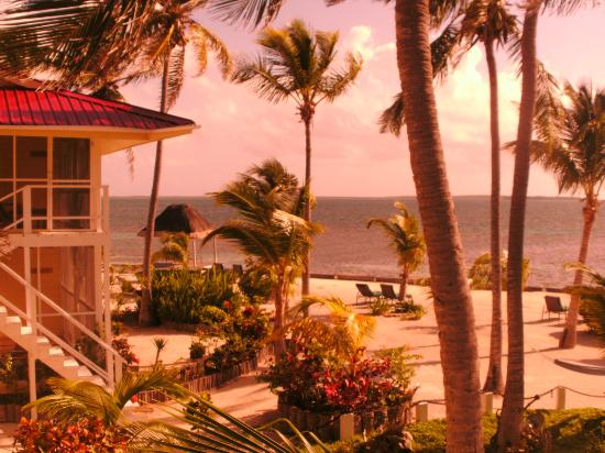 Turneffe Island Resort: The view