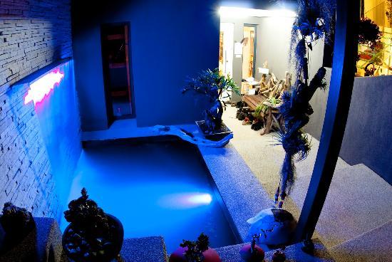 Phoenix Guest House - Wilderness : Water feature at front door