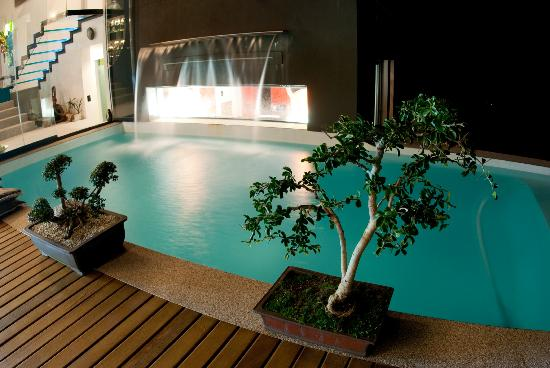 Phoenix Guest House - Wilderness : Pool water feature over window