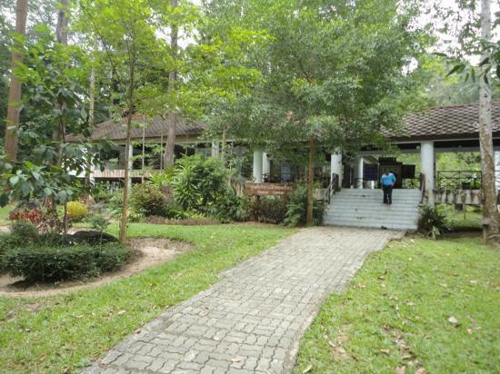 Peninsular Botanic Garden - Thung Khai: Visiter center 2