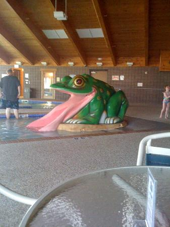 AmericInn Lodge & Suites Munising: small frog water slide