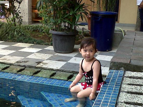 Taman Rosani Hotel & Villa: Swimming Pool