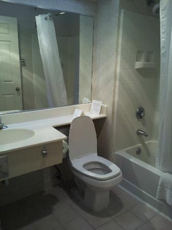 Comfort Inn Auburn-Worcester: bathroom
