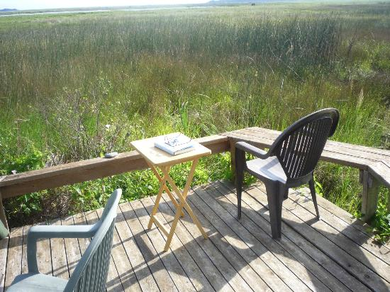 Castalia Marsh Retreat : deck of cabin