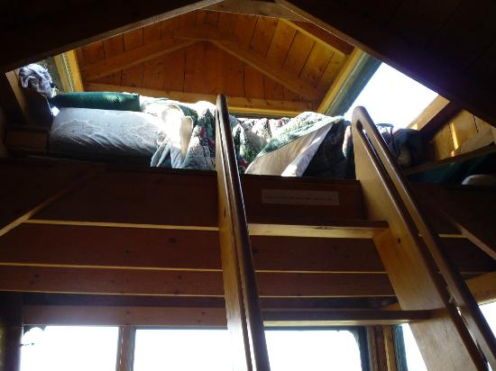 Castalia Marsh Retreat : Up to the loft