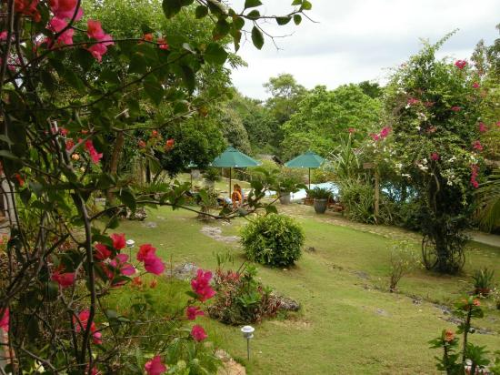 Amarela Resort: View from our room