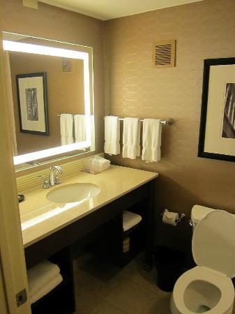 Sheraton Ann Arbor Hotel: bath
