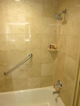 Sheraton Ann Arbor Hotel: shower