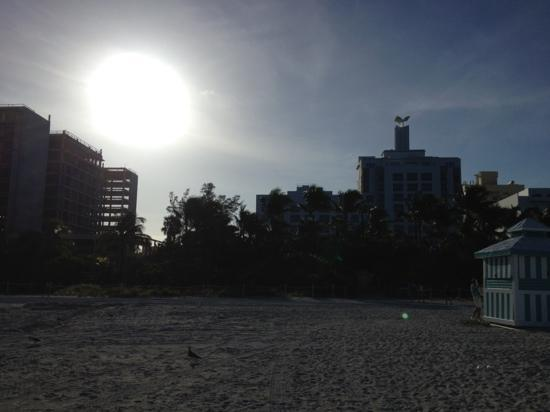 The Palms Hotel & Spa: Blick vom Strand - ACHTUNG Baustelle links!