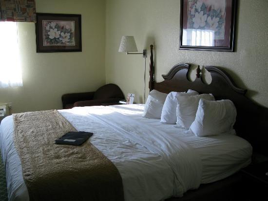 Quality Inn & Suites Romulus: chambre de style neutre et de bon goût