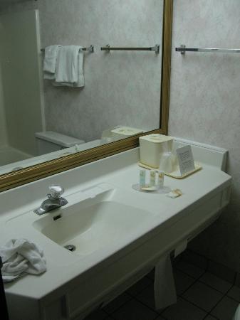 Quality Inn & Suites Detroit Metro Airport: qualité standard de cette chaîne