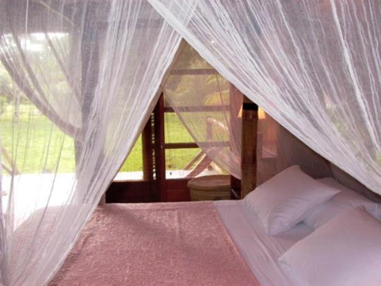 Acajou Hotel : Room 1