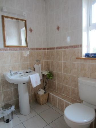 The Heeneys Lodge: bagno