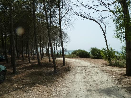 Eraclea Minoa Village: Vista camping...