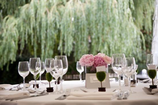 Falcon Hotel: Garden
