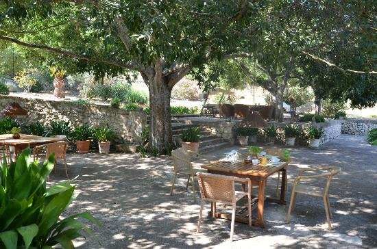 Agroturismo sa Rota d'en Palerm: Dining area / breakfast