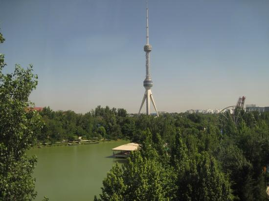 International Hotel Tashkent : View from room (back side)