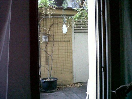 Hotel Bertusi: fuori dalla finestra (da aprire per il caldo soffocante) sporcizia che attrae insetti e lucertol