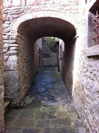 Villa Borgo San Pietro: Vicolo nel borgo