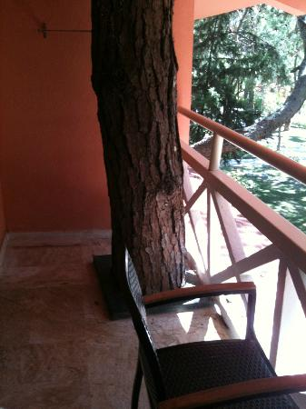 Marti Myra Hotel: tree takes place at our balcony