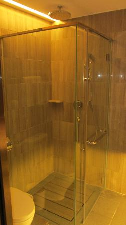 L'hotel élan : Bathroom with the brilliant electric privacy glass.