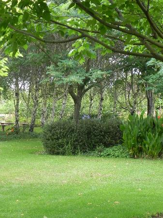 Tree Elle Retreat : The gardens at Tree Elle