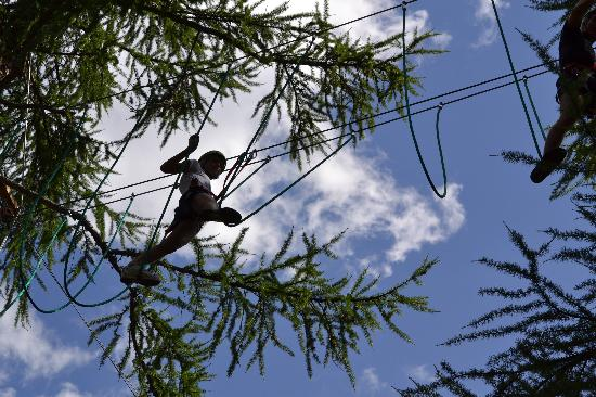 Larix Park : sospesi tra i rami
