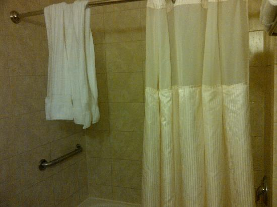 Best Western Premier Miami International Airport Hotel & Suites: Another view of the bathroom