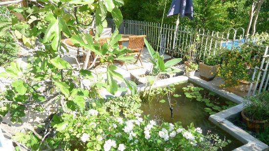 Le Moulin à Huile: petit bassin aux nénuphars